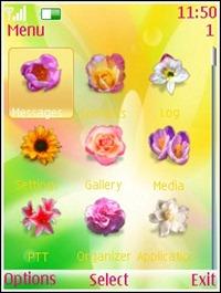 Flower_Glow_Theme
