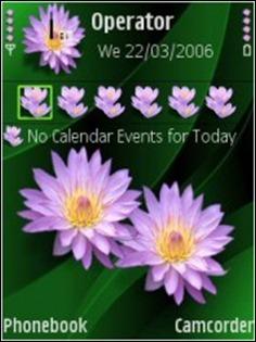 Nokia_Flowers_Theme