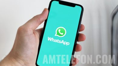 Photo of Millions of WhatsApp accounts will be DELETED if users do not accept the new Terms and Conditions